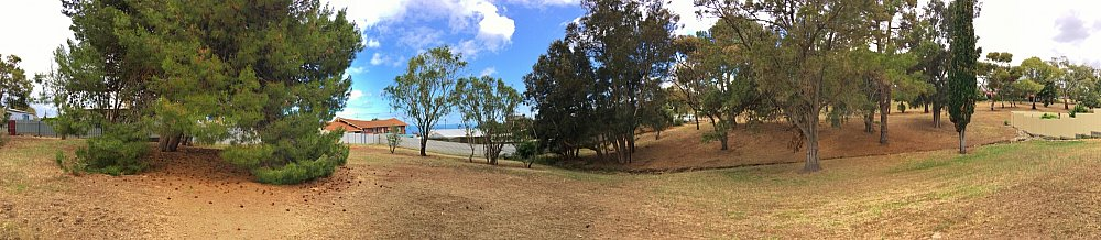 Central Avenue Reserve North Panorama 1