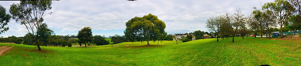 Hessing Crescent Reserve Panorama 1