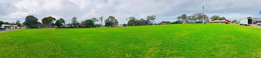 Kellett Reserve Oval Panporama 1