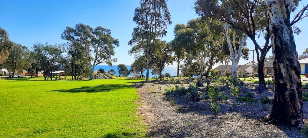 Bandon Terrace Reserve Natural Landscaping 2