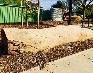 Sixth Avenue Reserve Nature Play Log