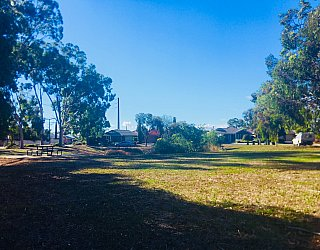 Tonsley Reserve 2