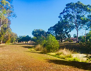 Tonsley Reserve Stormwater Retention 2