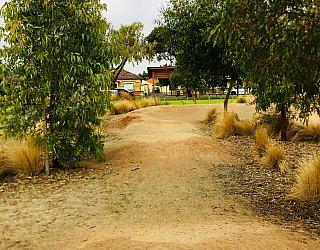 Jervois Street Reserve Pump Track 3