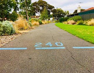 Jervois Street Reserve Bike Circuit