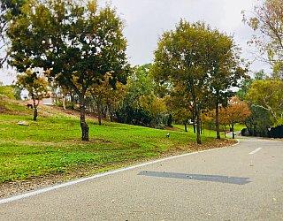Hugh Johnson Boulevard Reserve Path
