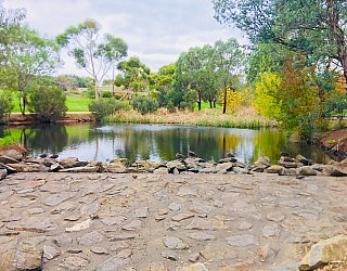 Hugh Johnson Boulevard Reserve Duck Pond