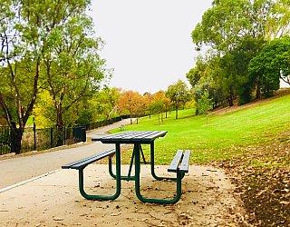 Hugh Johnson Boulevard Reserve Picnic Table