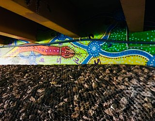 Warriparingga Wetlands Underpass Art 2