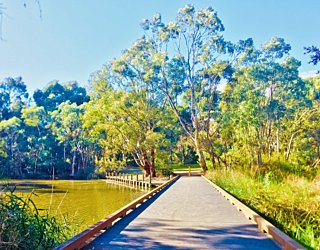 Warriparingga Wetlands Boardwalk 2