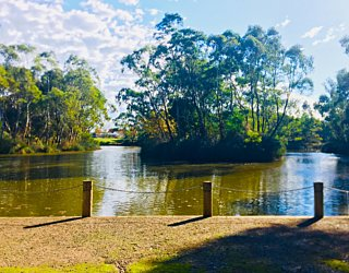 Warriparingga Wetlands Wetlands