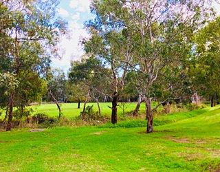 Warriparingga Wetlands River 1