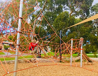 Gully Road North Reserve Climbing Net 3 Xb
