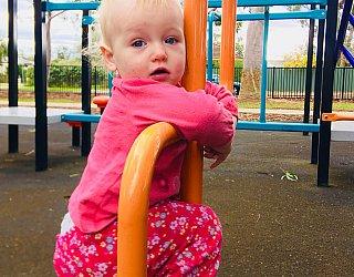Sandery Avenue Reserve Orange Ladder 1 Eb