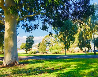 Everest Avenue Reserve Sturt River Linear Park 4