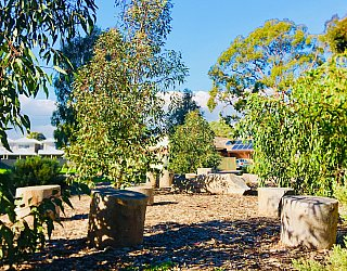 Everest Avenue Reserve Nature Area 1