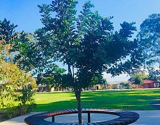 Warradale Park Reserve Circular Seating