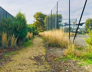 Aldridge Avenue Reserve Track 3