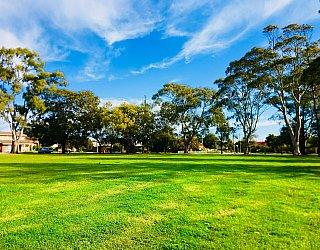 Mitchell Street Reserve Grass 3