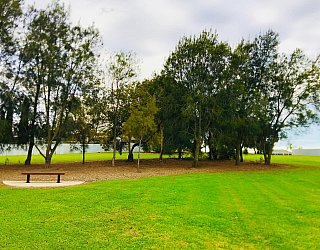 Tyson Avenue Reserve Seat 2