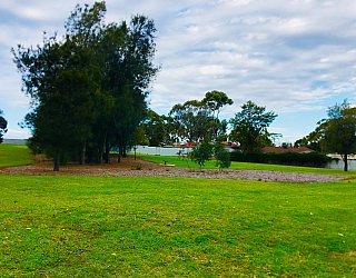 Tyson Avenue Reserve 1