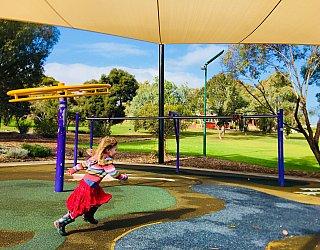 Pavana Reserve Playground Gyro Spinner Zb1