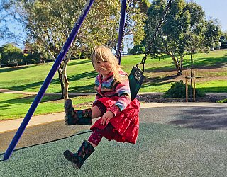 Pavana Reserve Playground Swings Zb 3
