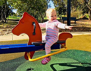 Pavana Reserve Playground Seesaw Eb 1