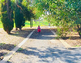 Pavana Reserve Facilities Path Zb 1