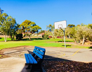 Pavana Reserve Sports Basketball 1