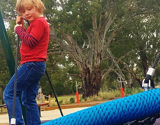 Kenton Avenue Reserve Playspace Basket Swing