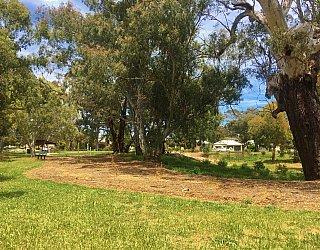 Kenton Avenue Reserve Grass