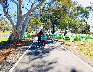 Appleby Road Reserve Sturt River Linear Park Xb Zb 1