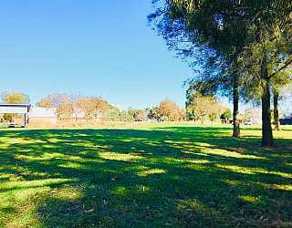 Rosedale Avenue Reserve 1