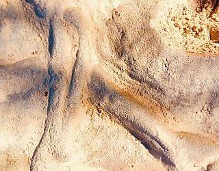 Glade Crescent Reserve Junior Playground Sandpit Fossils 2