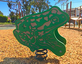 Woodforde Family Reserve Playground Springer Frog 1