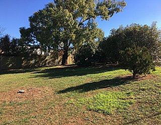 Nannigai Drive Reserve Grass 2