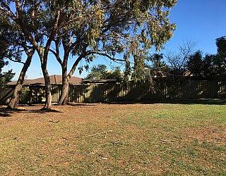 Nannigai Drive Reserve Grass 3