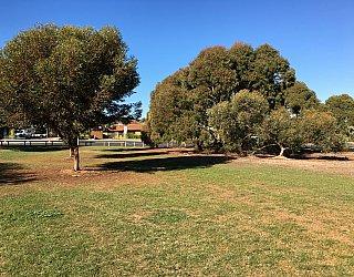 Nannigai Drive Reserve Grass 6