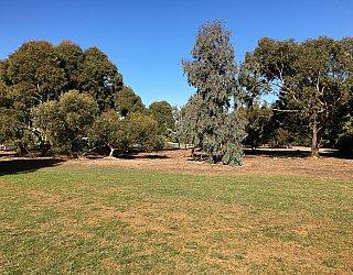 Nannigai Drive Reserve Grass 7