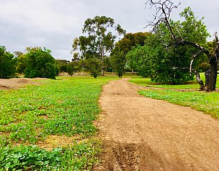 Bombay Avenue Reserve Bmx 5