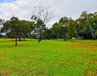 Bombay Avenue Reserve 1