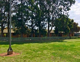 Jacaranda Grove Reserve 1