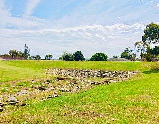Mostyn Road Reserve Swale 2
