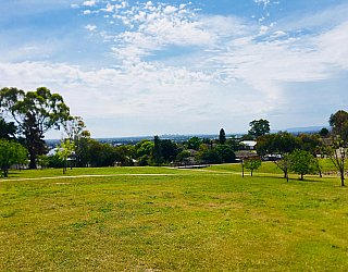 Mostyn Road Reserve 1