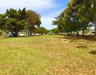 Waratah Square Reserve 2
