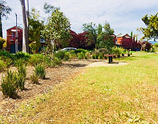 Waratah Square Reserve Facilities
