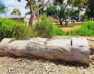 Waratah Square Reserve Facilities Natural Seating 1