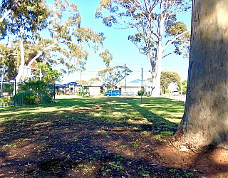Ballara Park Reserve 2
