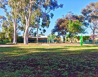 Ballara Park Reserve 1